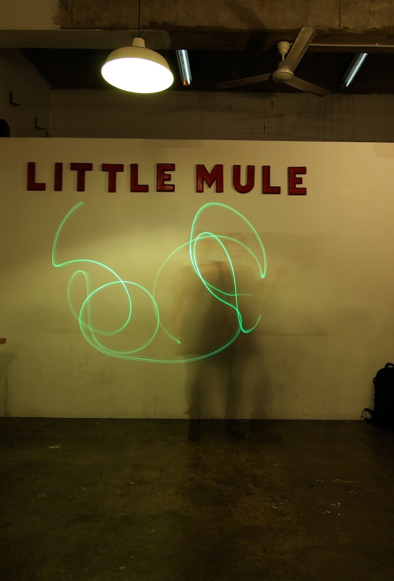 Partners in Light - Little Mule
