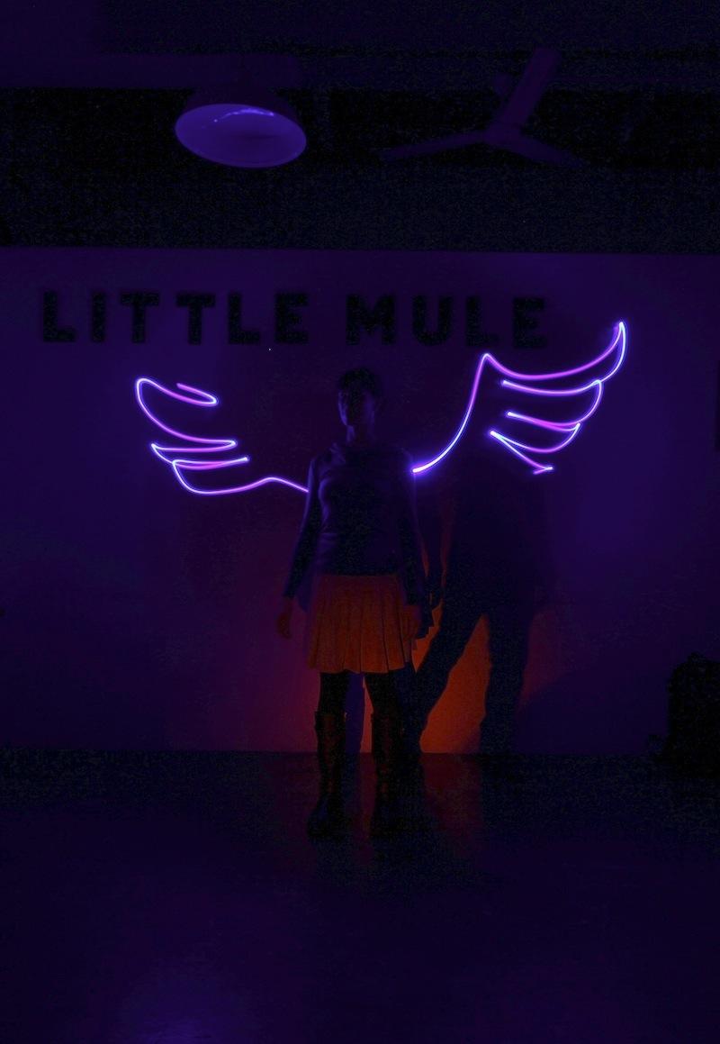 Partners in Light - neon wings