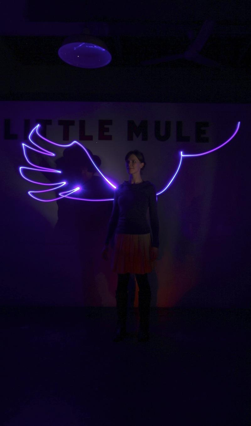 Partners in Light - neon wings II